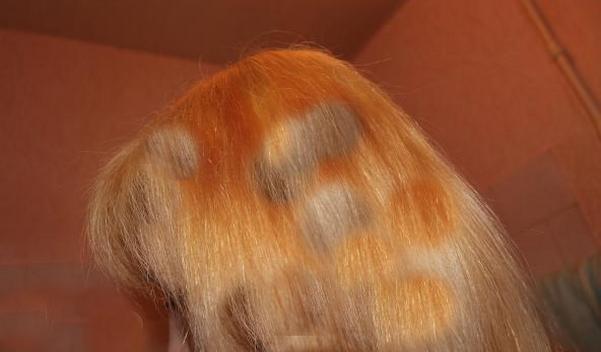 разные цвета на голове